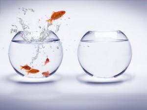 Photo illustrant changer les comportements